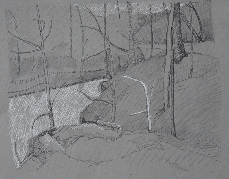 creek-woodsB-1