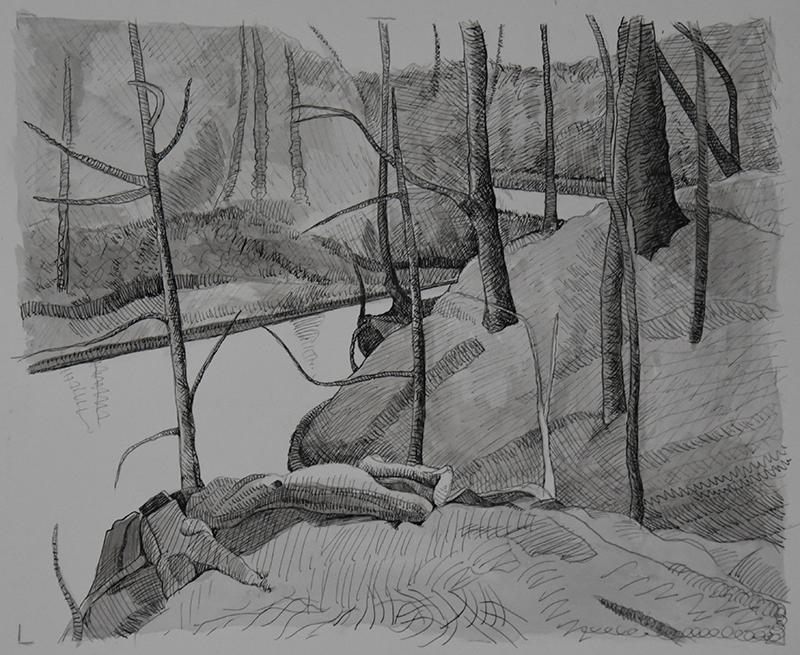creek-woodsB-2