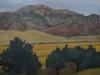 wheat-mountains